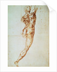 Nude, study for the Battle of Cascina by Michelangelo Buonarroti