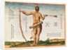 Distinctive Markings of a Warrior of Virginia by John White