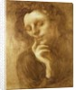 Portrait of a Woman or, Tenderness by Eugene Carriere