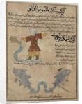 Aquarius and Pisces by Islamic School