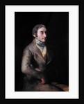 Don Manuel Silvela by Francisco Jose de Goya y Lucientes