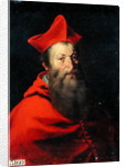 Cardinal Jacques Sadolet Bishop of Carpentras by French School