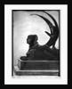 Sphinx by Felicien Rops