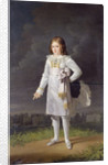 Frederic-Napoleon Prince Bacciochi by Barbara Krafft