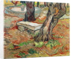 The Bench at Saint-Remy by Vincent van Gogh
