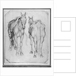 Two horses by Antonio Pisanello