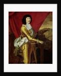 Louis XIV by Pierre Mignard