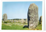 Alignment of standing stones by Prehistoric