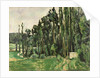 The Poplars by Paul Cezanne