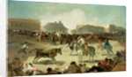 A Village Bullfight by Francisco Jose de Goya y Lucientes