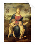 Madonna of the Goldfinch by Raphael