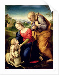The Holy Family with a Lamb by Raphael