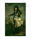 Portrait of Louis XIV by Hyacinthe Francois Rigaud