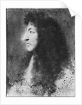 Portrait of Louis XIV, young, in profile to the left by Charles Le Brun