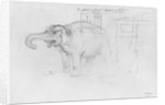 Album of the Siege of Paris, Elephant by Gustave Dore
