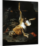 Hare by Melchior de Hondecoeter