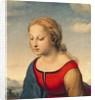 La Belle Jardiniere by Raphael