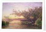 Sunset, Camargue by Felix Ziem