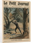 Imperial Woodcutter, Wilhelm II enjoying his leisure time by cutting trees in the park of Sanssouci by French School