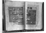 The 'Suleymanname' or 'Life of Suleyman', the Fleet of the Sultan by Turkish School