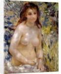 Study. Torso, effect of sunlight by Pierre Auguste Renoir