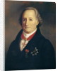 Portrait of Johann Wolfgang von Goethe with Decorations by Heinrich Cristoph