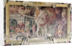 The Royal Elephant by Giovanni Battista Rosso Fiorentino