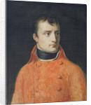 Napoléon Bonaparte, First Consul by Anne Louis Girodet de Roucy-Trioson