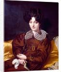 Portrait of Suzanne Clarisse de Salvaing de Boisseiu, Madame Marcotte de Sainte-Marie by Jean Auguste Dominique Ingres