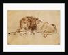 Lion Resting by Rembrandt Harmensz. van Rijn