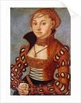 Portrait of a Noble Saxon Woman by Lucas
