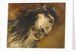 Head of a Horse by Alfred Roll