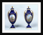 A Pair of Sèvres Vases with decorative floral medallions by French School