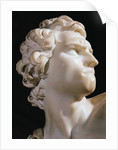David (detail of the head, right profile) by Gian Lorenzo Bernini