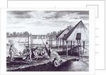 Summer Huts by English School