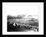 Allied Encampment, Crimea by Roger Fenton