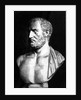 Bust of Thucydides by Felix Jules Lacaille