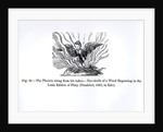 The Phoenix rising from his ashes by illustration from 'Science and Literature in The Middle Ages and Renaissance'