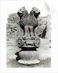 Lion capital from the Pillar of Emperor Ashoka by Indian School