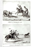 Methods of Throwing the Lasso and the Bolas by John Miers