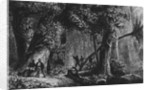 Forest Opening from 'Bresil, Columbie at Guyanes', by Ferdinand Denis and Cesar Famin by French School