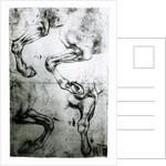 Studies of Horses legs by Leonardo da Vinci