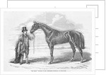 'My Mary', winner of the Yorkshire Handicap at Doncaster by English School