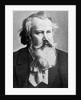 Johannes Brahms by Austrian Photographer