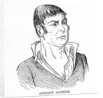 Andrew Gamble by English School