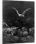 The albatross is shot by the Mariner, by S.T. Coleridge by Gustave Dore