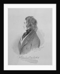 Portrait of Charles Dickens 16th December 1841 by Alfred d' Orsay
