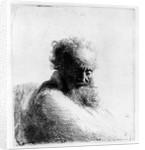 Head of an old man by Rembrandt Harmensz. van Rijn