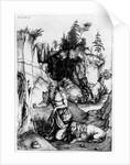 St. Jerome in the Wilderness by Albrecht Dürer or Duerer
