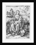 Madonna with the monkey by Albrecht Durer or Duerer